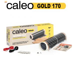 Caleo Gold 170